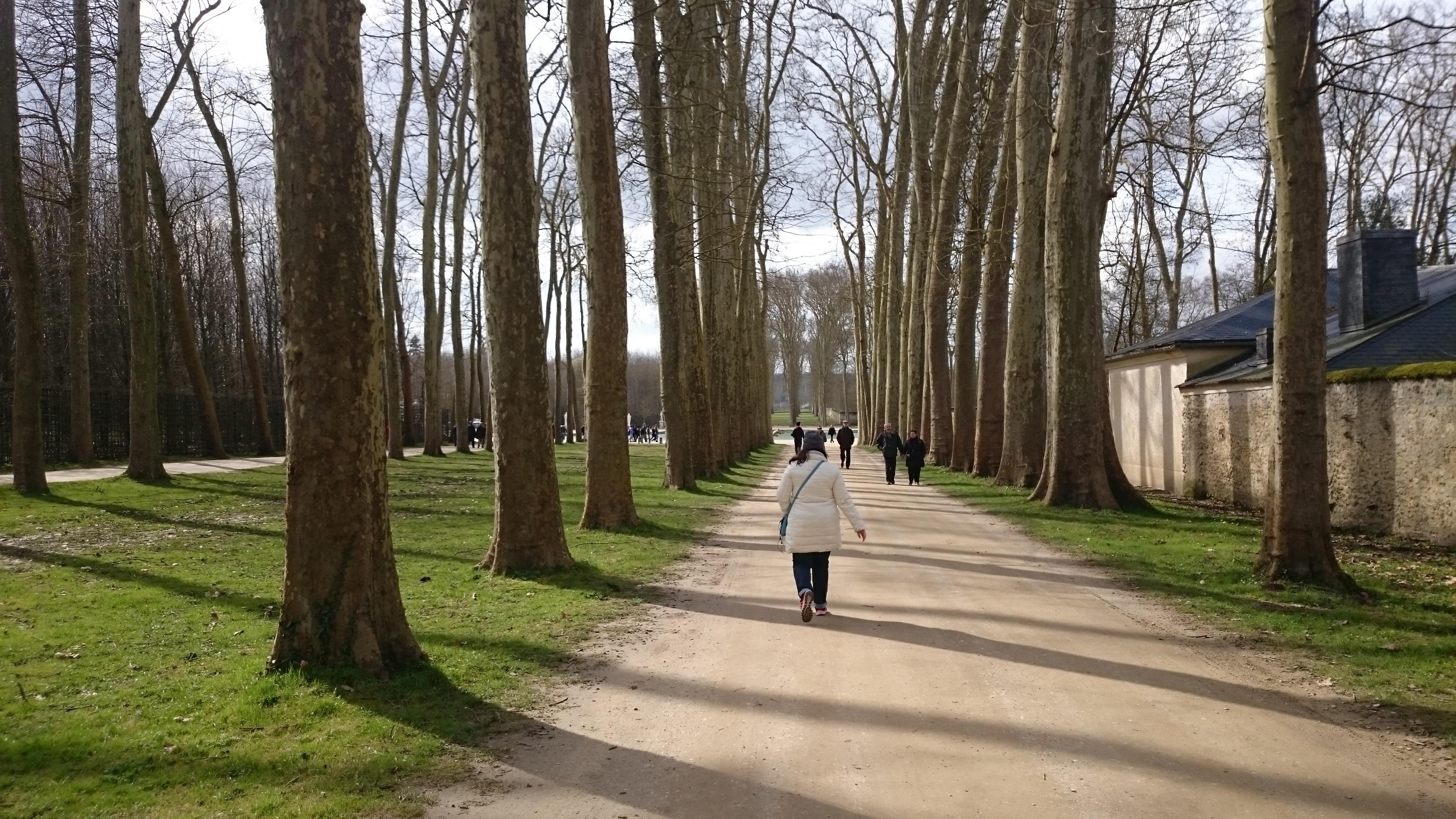 dsc 1170 copia - Visita al Palacio de Versalles: Como ir, cuanto cuesta y tips II/III